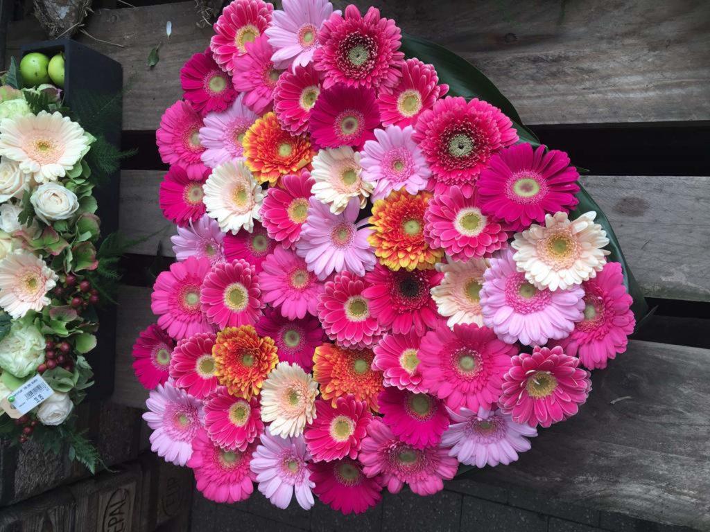 Florenza-Ekeren_schilde-Kontich-bloemen-planten-decoratie-interieur-begrafenis-grafwerk-6