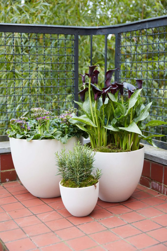 Florenza-Kontich-Ekeren-Schilde-bloemen-en-planten-decoratie-interieurinrichting-DM-pot-2