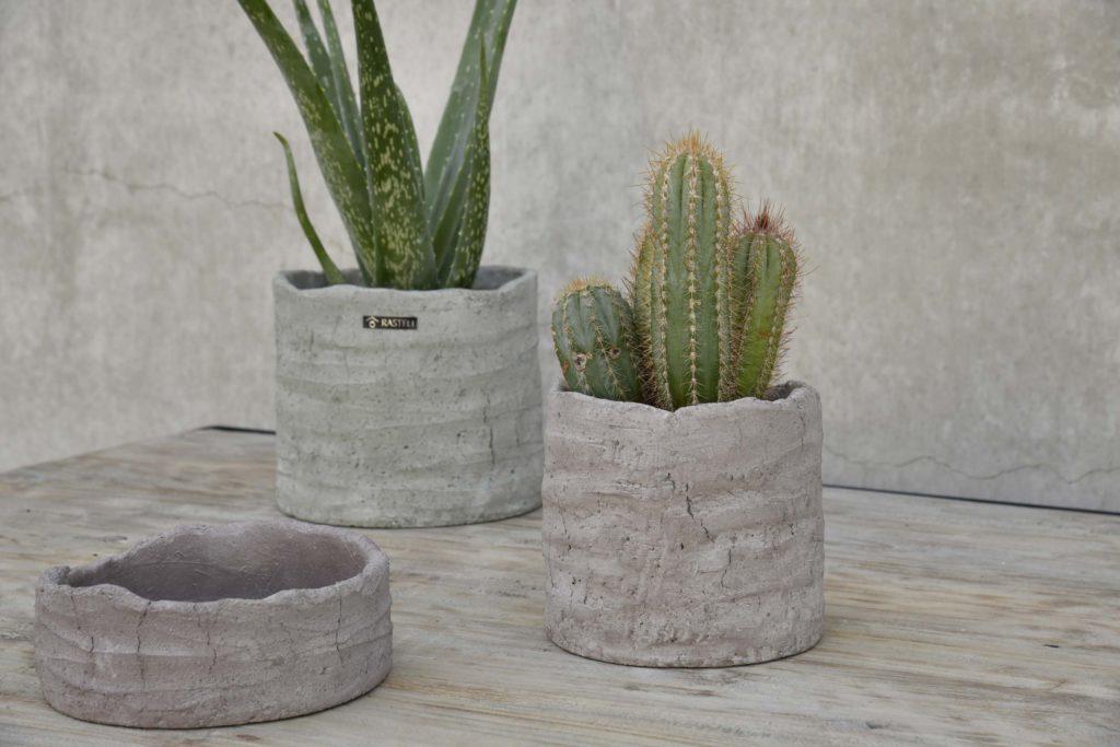 Florenza-Kontich-Ekeren-Schilde-bloemen-en-planten-decoratie-interieurinrichting-rastelli-aardetint-pot-1