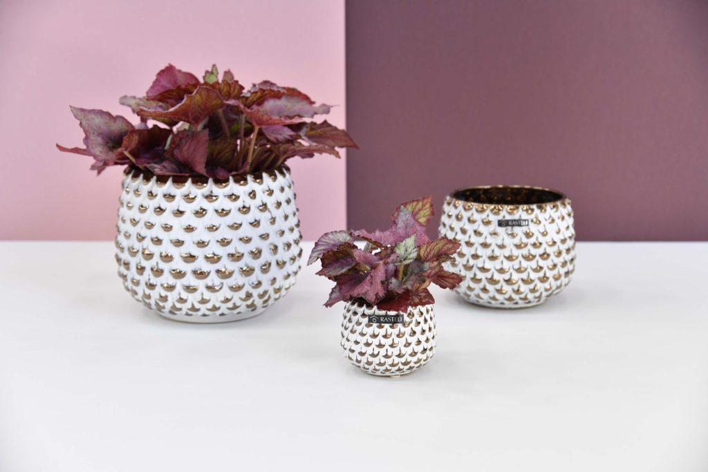 Florenza-Kontich-Ekeren-Schilde-bloemen-en-planten-decoratie-interieurinrichting-rastelli-pot-1