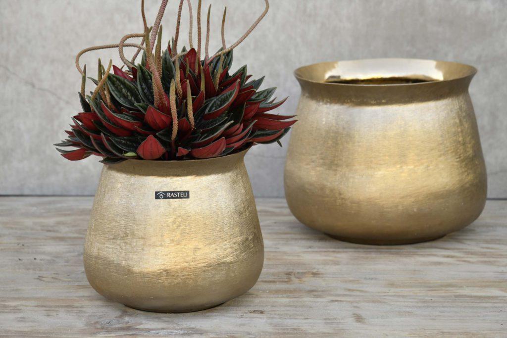 Florenza-Kontich-Ekeren-Schilde-bloemen-en-planten-decoratie-interieurinrichting-rastelli-pot-goud-1